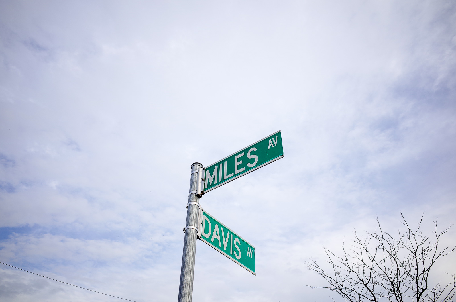 Miles and Davis Avenue Signs