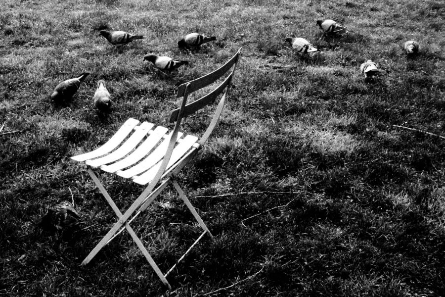Pidgeon Seat, Olympus Tough Grainy Film Street Photography