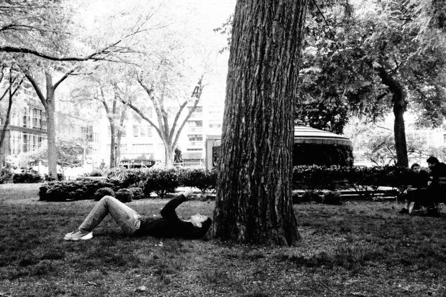 Tree Friend, Olympus Tough Grainy Film Street Photography