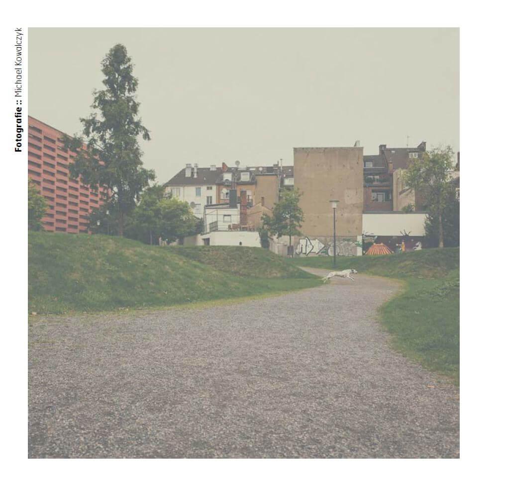 LUUPS-Aachen-2015-Dalmatiner-Run-Michael-Kowalczyk-Photography-1