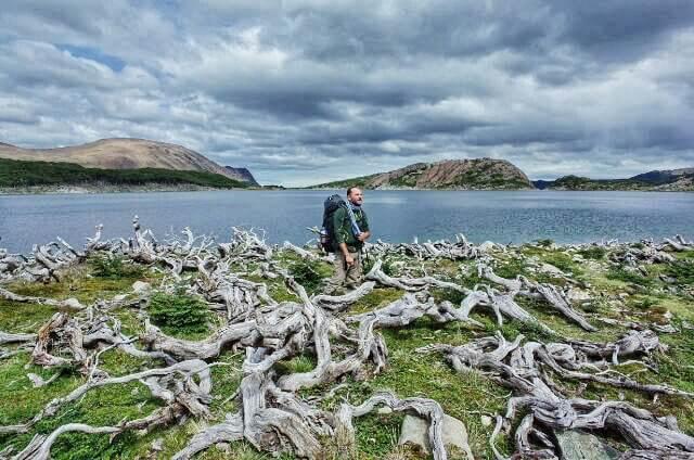 Dientes de Navarino Trekking Laguna de los Dientes Dead Wood
