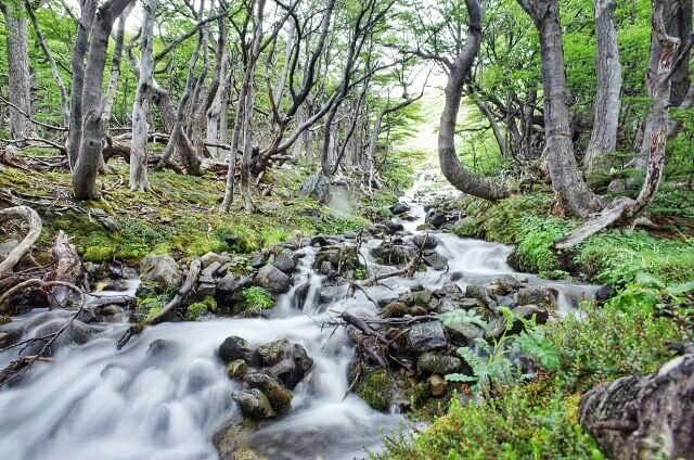 Dientes de Navarino Trekking Laguna de los Guanacos Waterfall