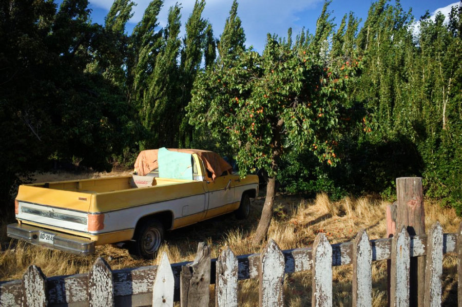 Chile Chico Chevrolet Truck and Peach Tree