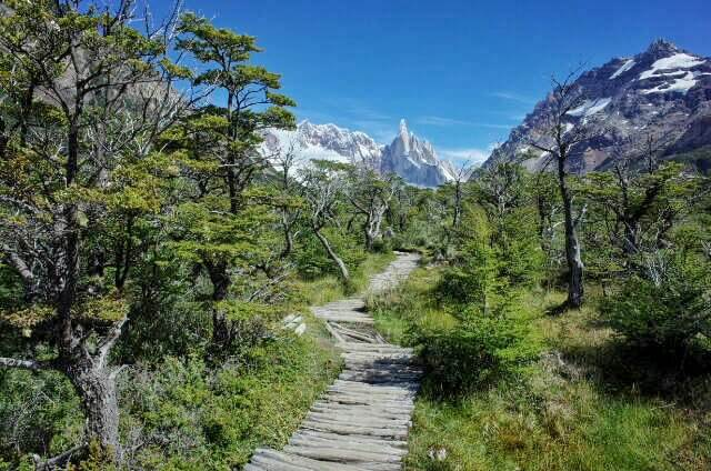 Wooden path to Laguna Torre Firtz Riy