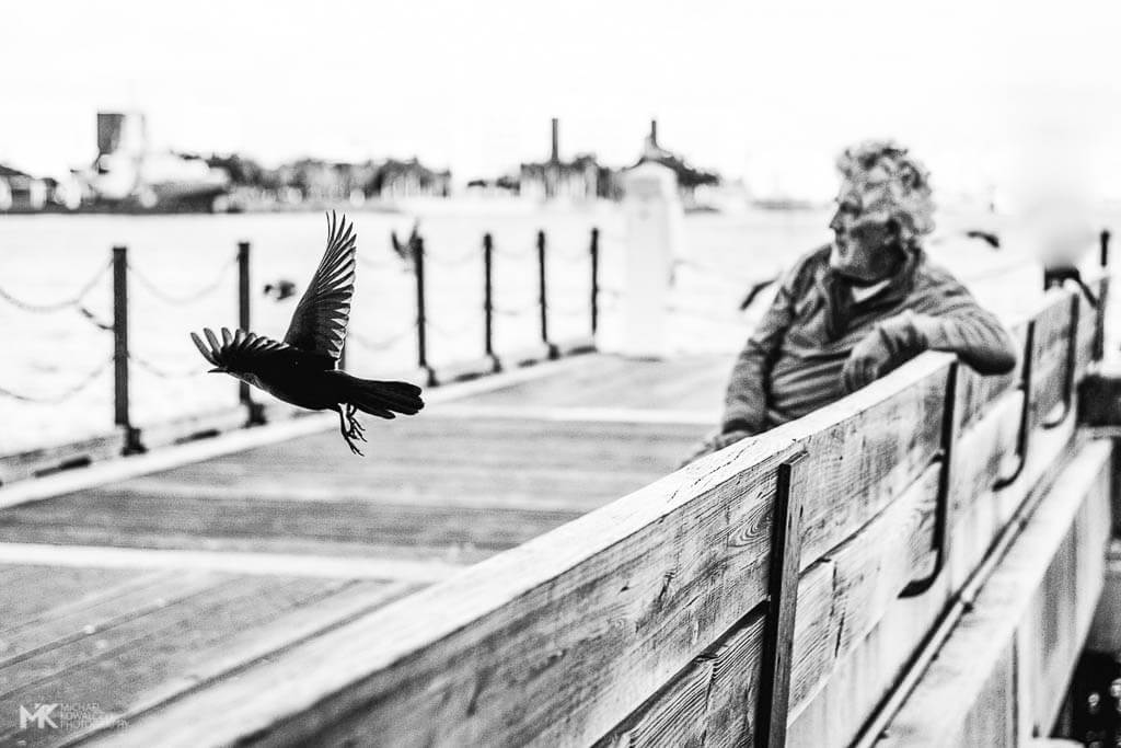 Fly Away Miami 2016 Michael Kowalczyk