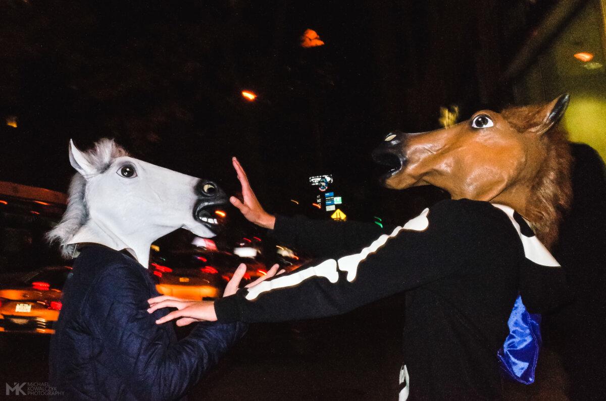 Horse Argument